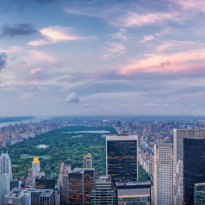 Quarterly State Legal Update from CEDR: New York